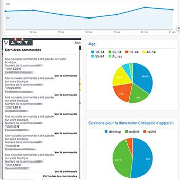 Démonstrations et explications pour exploiter les données fournies par un CMS de e-commerce pour optimiser les ventes